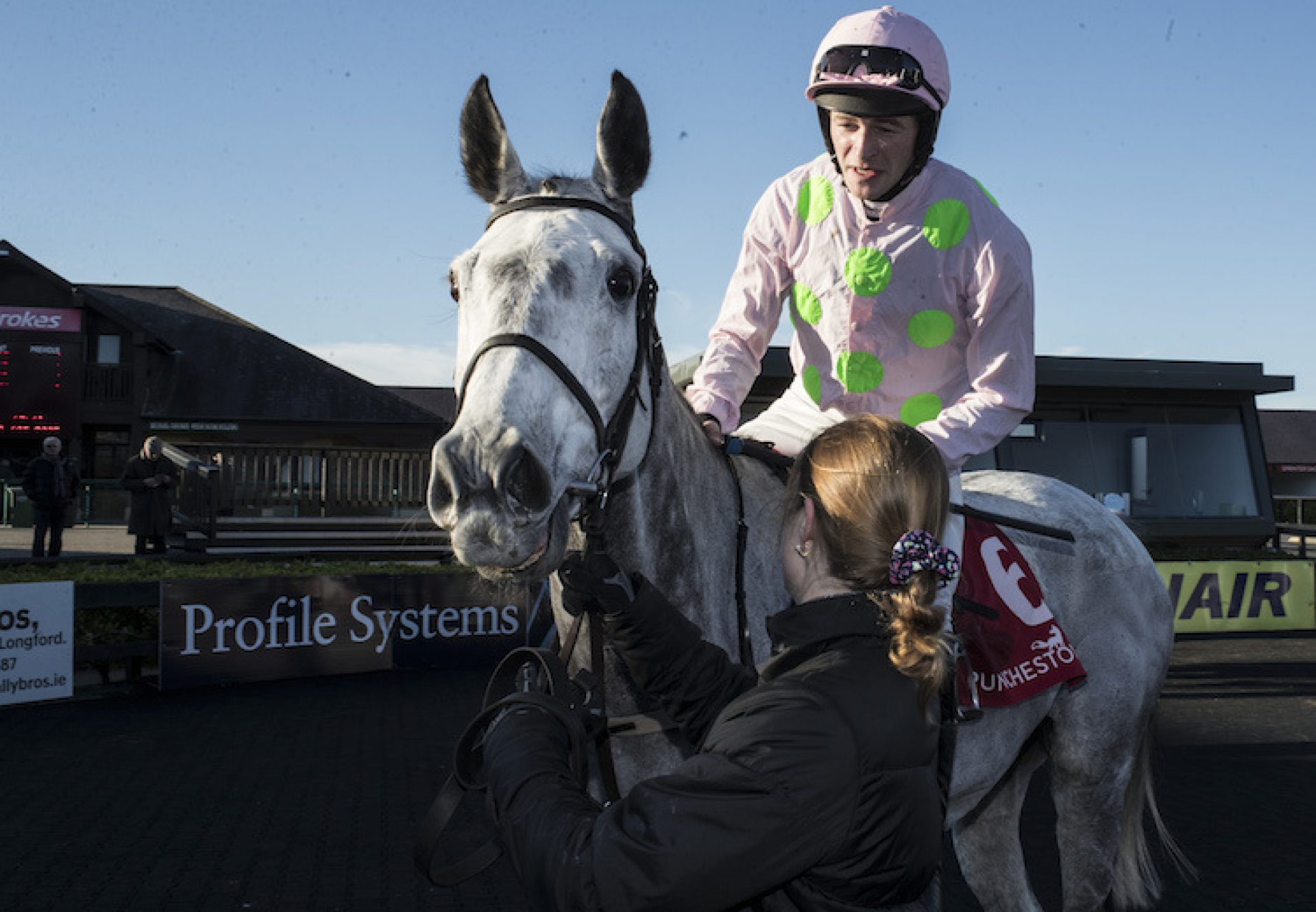 Some Neck (Yeats) pictured after winning the G2 Florida Pearl Novice Chase at Punchestown