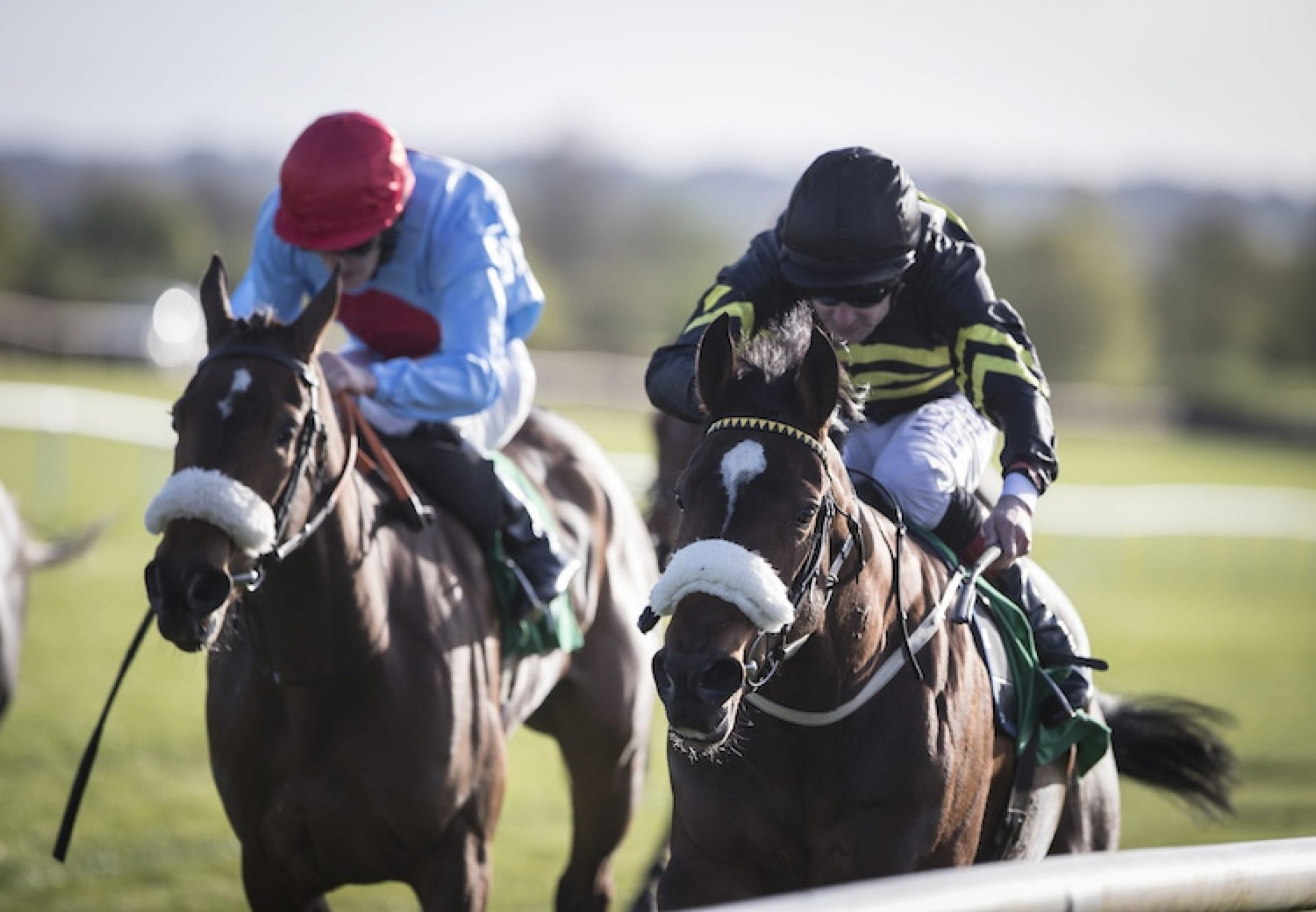 So You Thought (So You Think) winning a maiden at Navan
