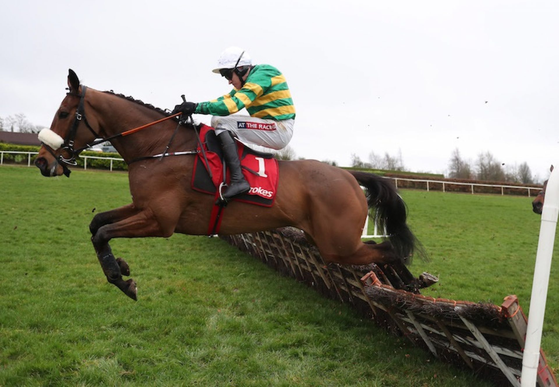 Westerner Lady (Westerner) winning a G3 Mares Chase at Clonmel