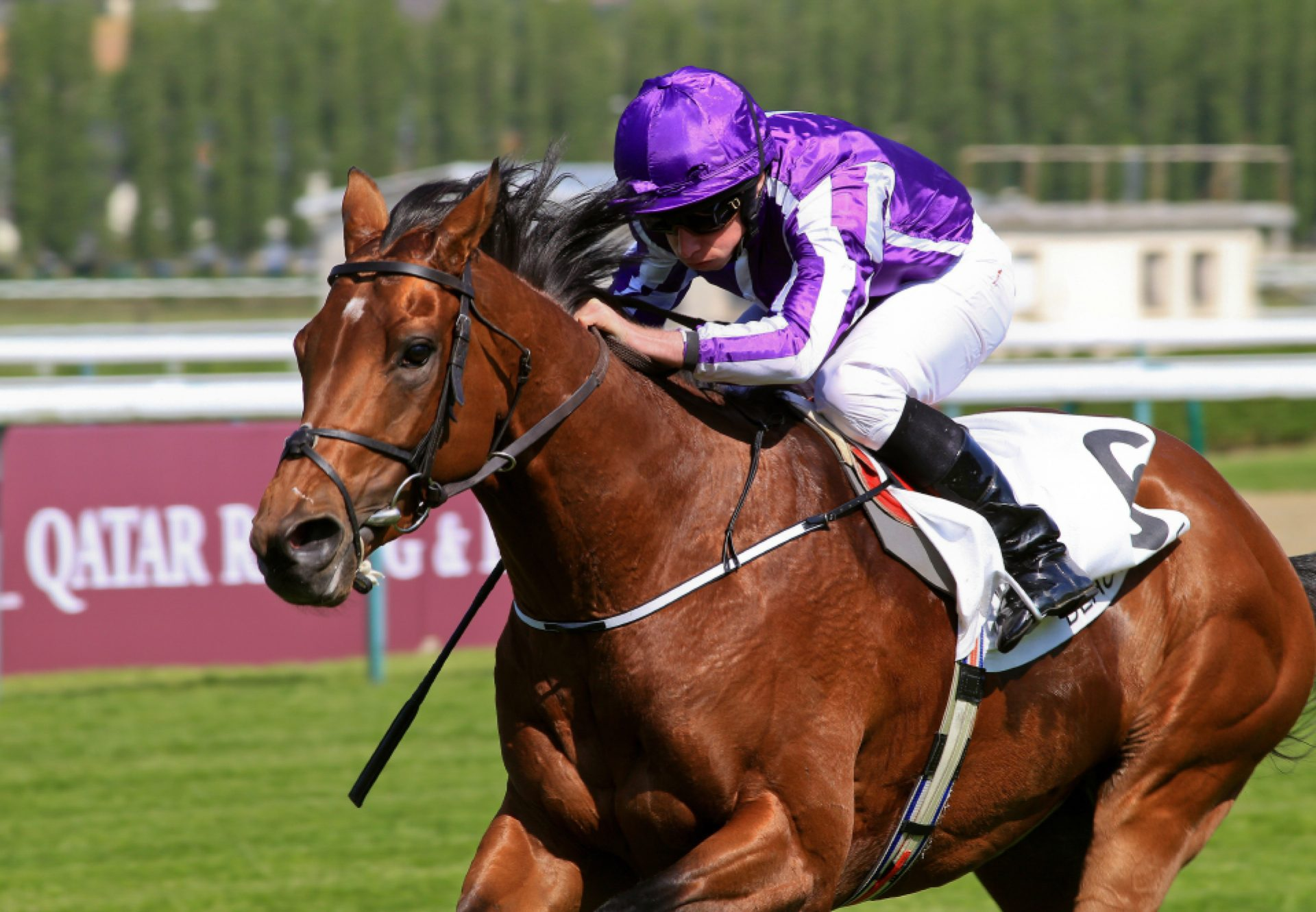 The Gurkha winning the French Guineas (Gr.1)