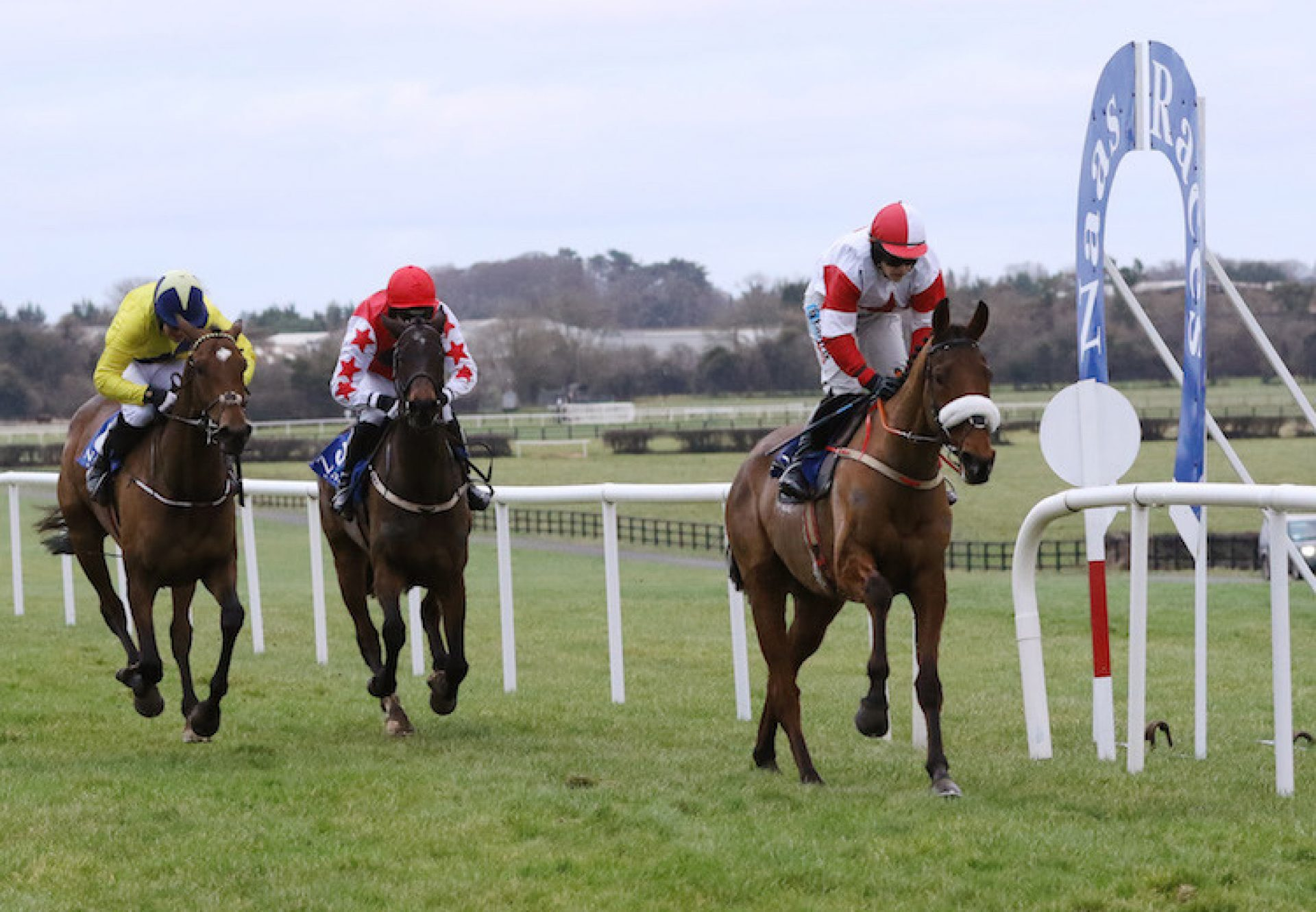 The Big Dog (Mahler) winning a bumper at Naas