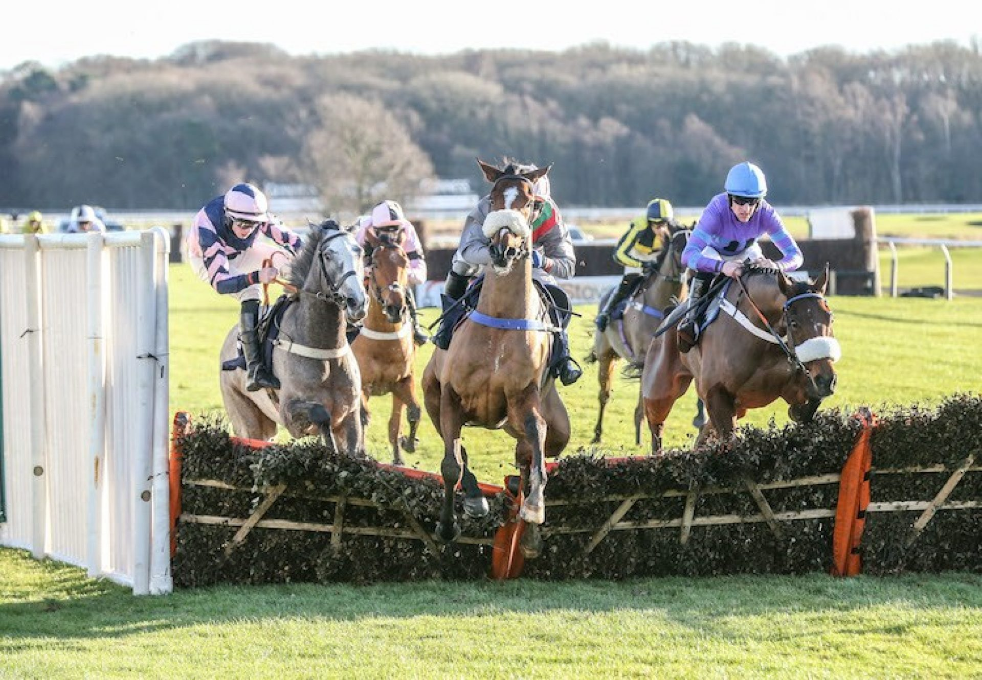 The Great Getaway (Getaway) winning a novice hurdle at Newcastle