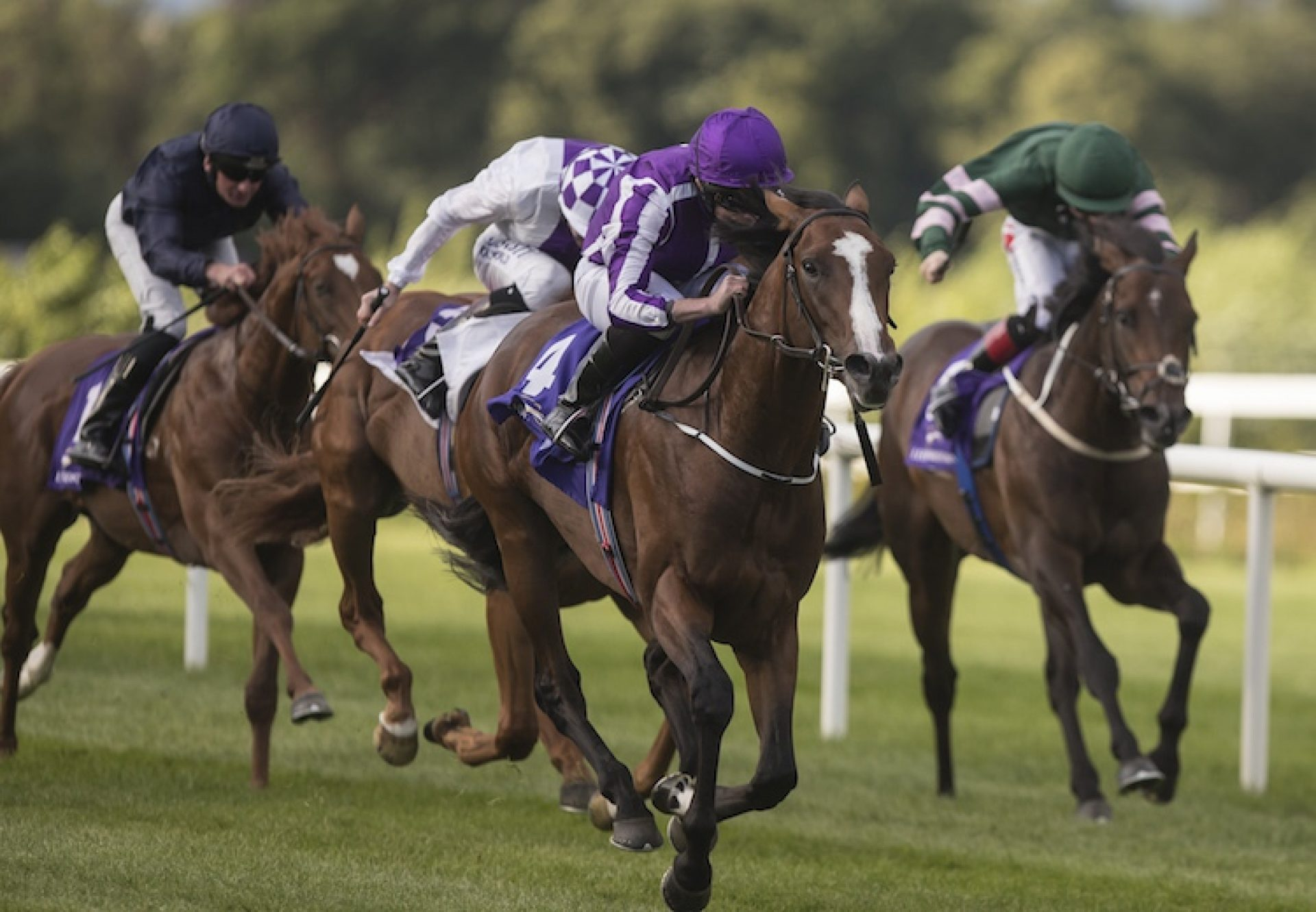 The Pentagon (Galileo) winning the G3 Tyros Stakes at Leopardstown