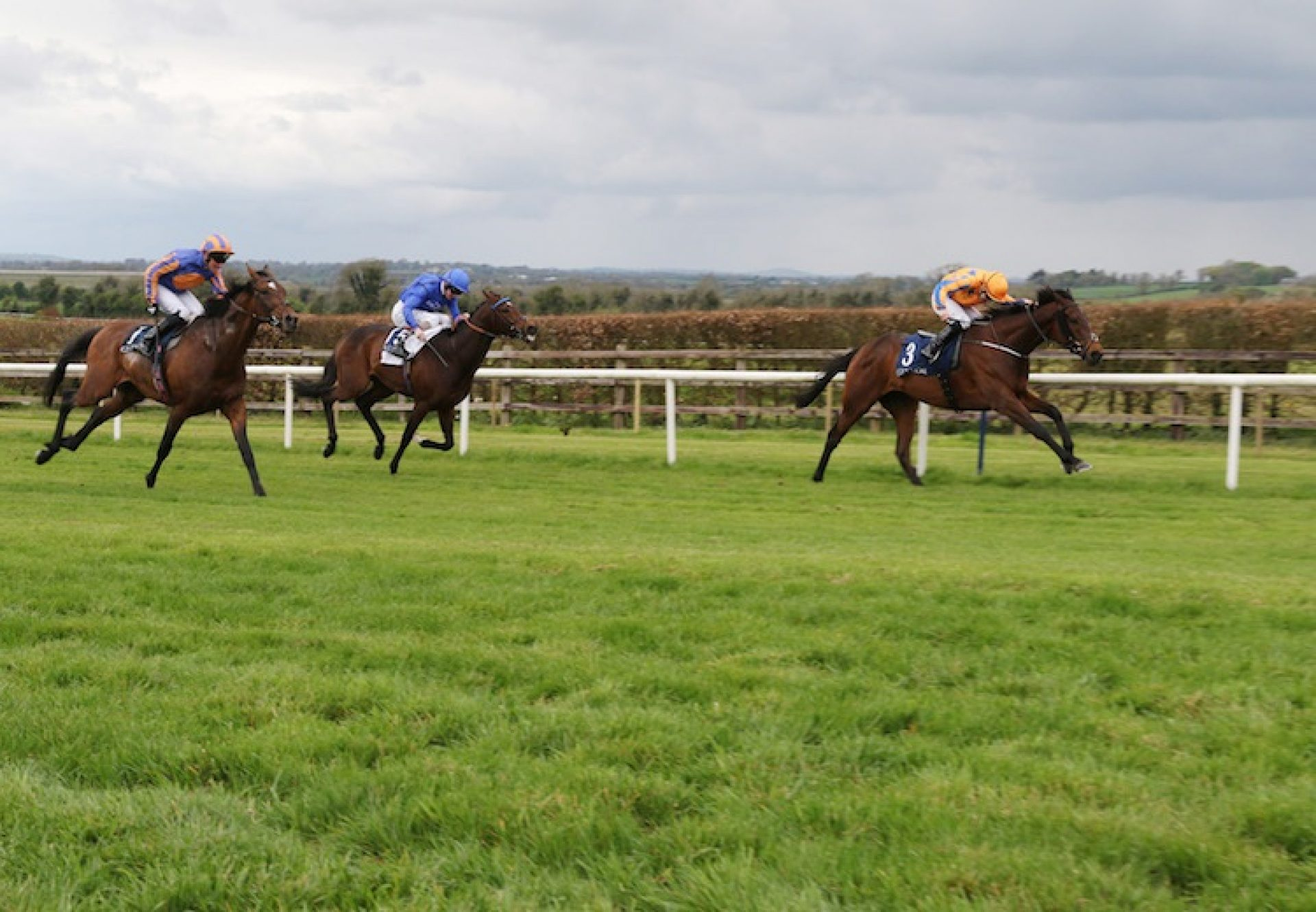 Torcedor (Fastnet Rock) winning the G3 Vintage Crop Stakes at Navan