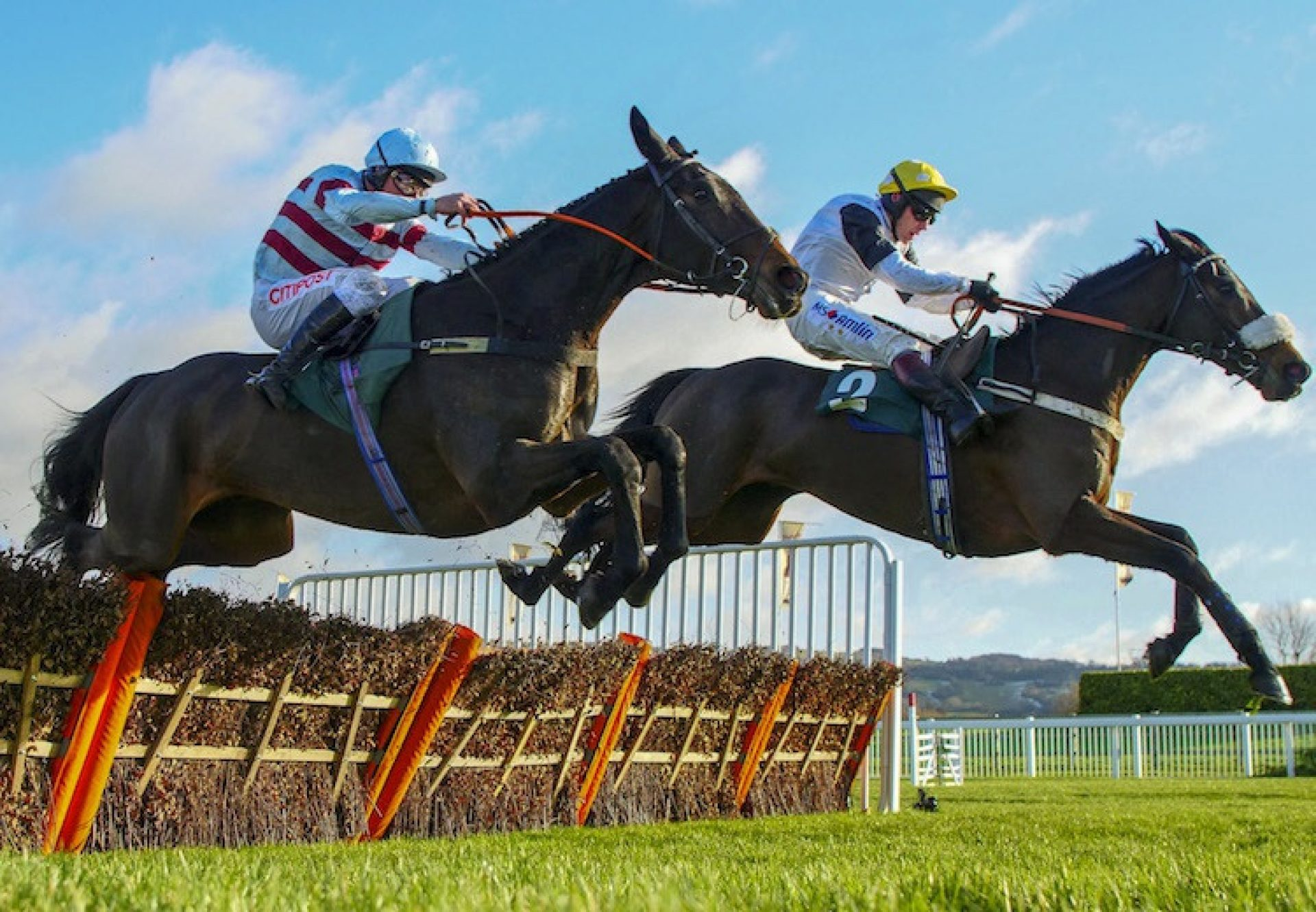 Western Ryder (Westerner) winning a novices' hurdle at Cheltenham