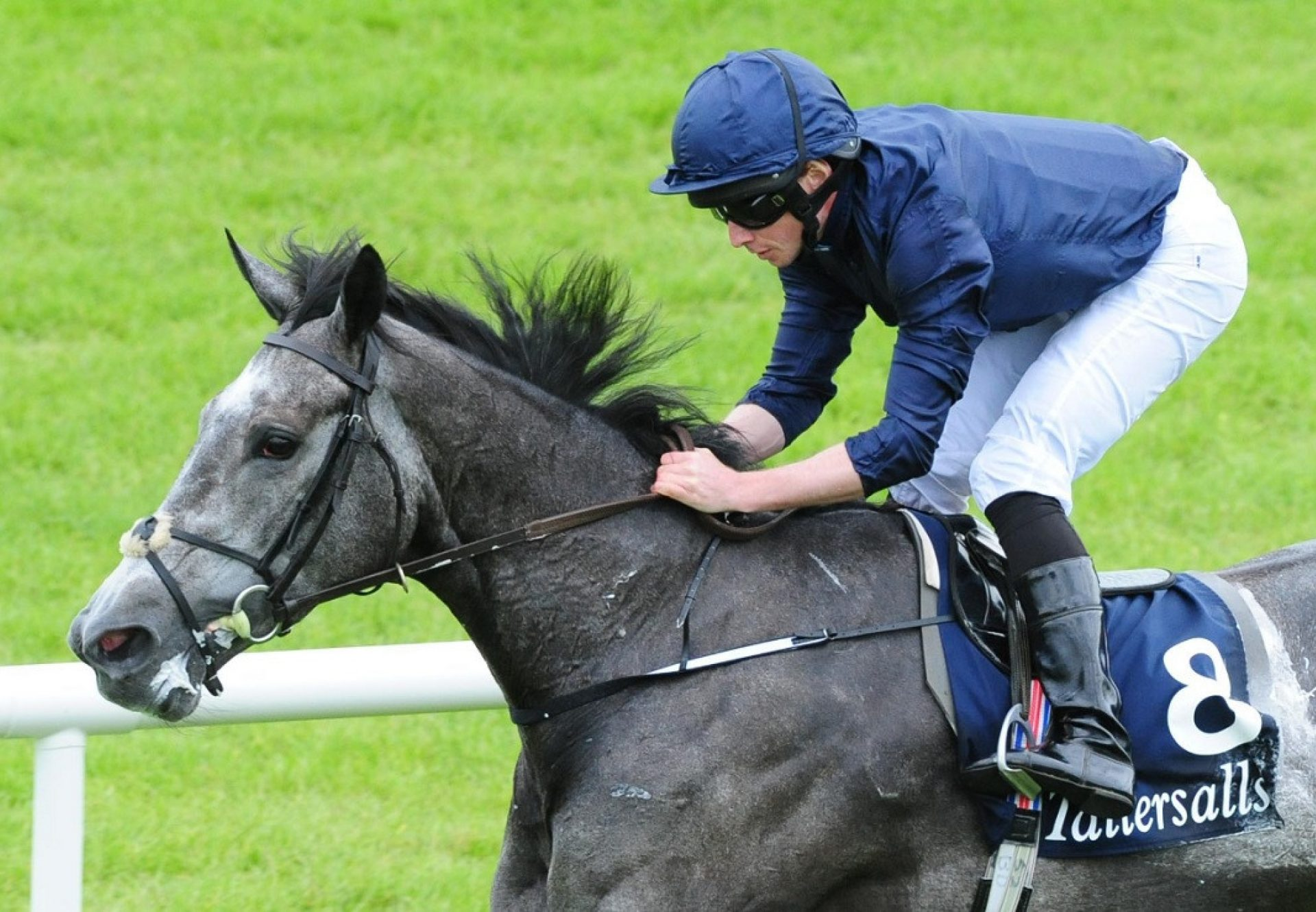 Excelebration winning the G1 Queen Elizabeth II Stakes at Ascot