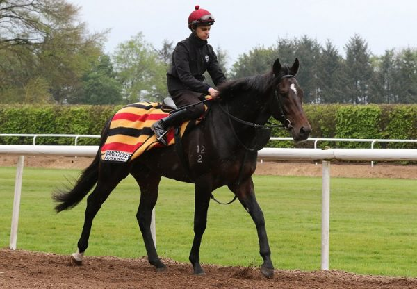 Vancouver at Ballydoyle