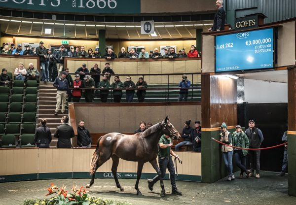 2019 Goffs Orby Sales Topper By Galileo Ex Green Room