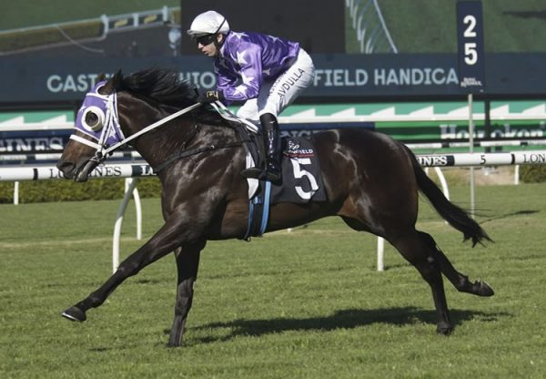 Achiever (Pride Of Dubai) winning at Randwick