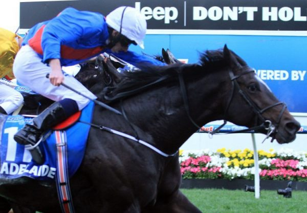 Adelaide winning the Cox Plate
