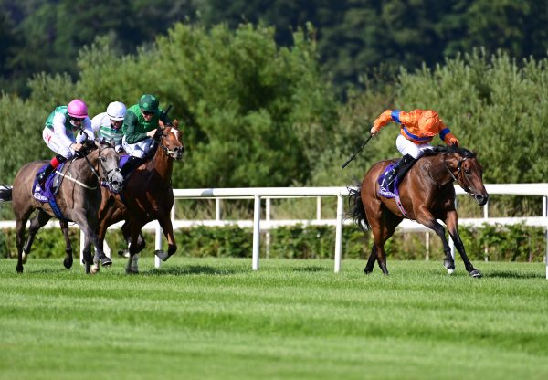 Agartha (Caravaggio) Wins Gr.3 Silver Flash Stakes at Leopardstown