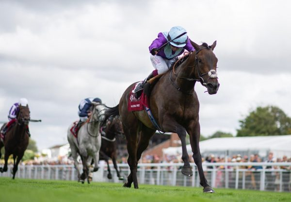Alcohol Free (No Nay Never) Wins The Group 1 Sussex Stakes at Goodwood