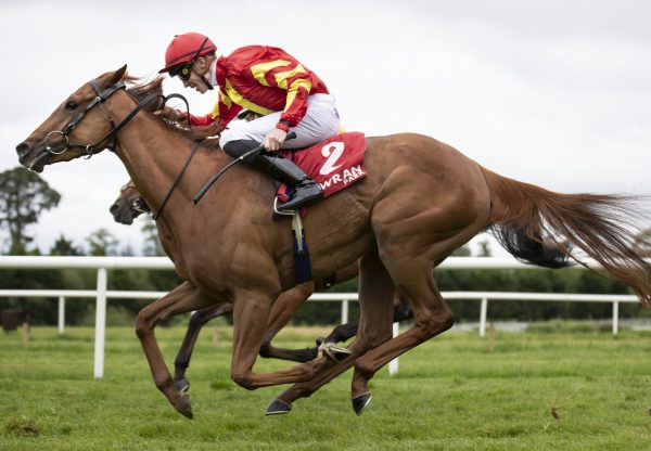 Altair Books Her Ticket To Ascot
