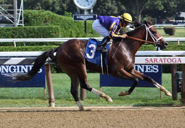 American Butterfly (Saratoga) winning a MSW at Saratoga