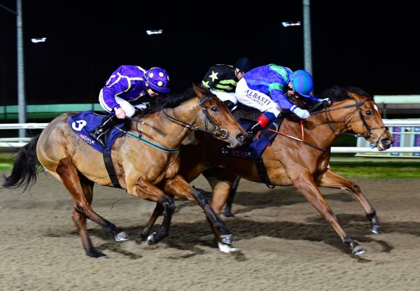 American Lady (Starspangledbanner) wins maiden at Dundalk