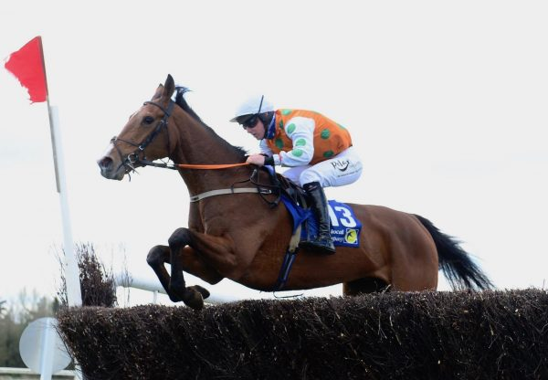 American Mike Makes A Winning Debut At Cork 1