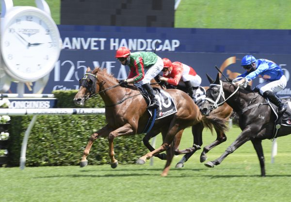 Amica (Rubick) winning at Randwick