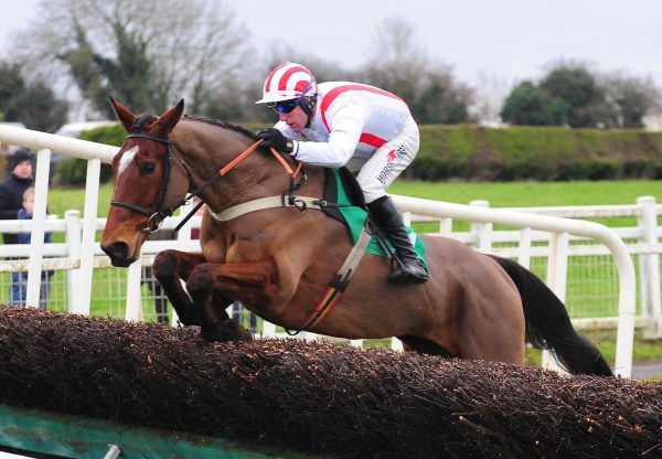 An Fraoch Mor Wins At Navan