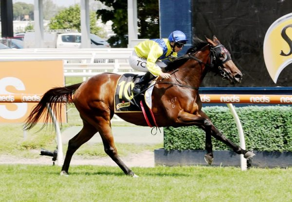 Anaheed (Fastnet Rock) winning the Gr.2 MRC Rubiton Stakes at Caulfield.