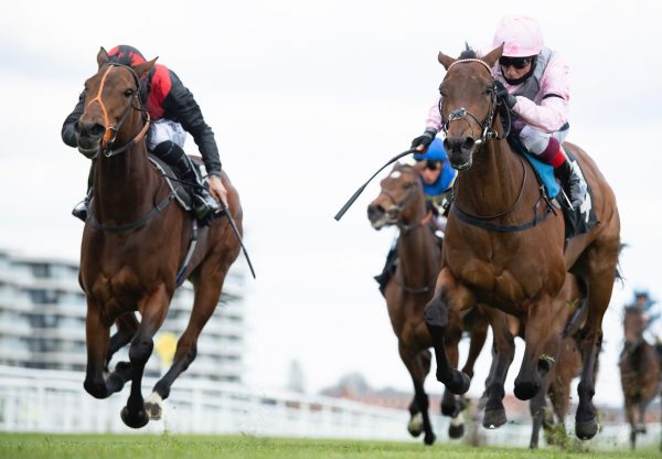 Aristia (Starspangledbanner) Wins The Fillies Maiden At Newbury