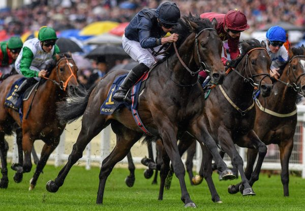 Arizona winning the Gr.2 Coventry Stakes at Royal Ascot