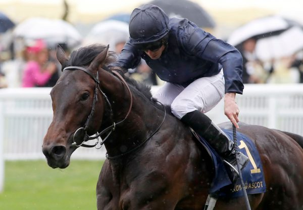 Arizona (No Nay Never) winning the Gr.2 Coventry Stakes at Royal Ascot
