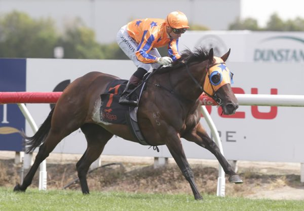 Avantage (Fastnet Rock) winning the Gr.1 BCD Group Sprint at Te Rapa