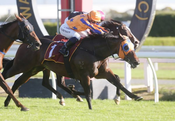 Avantage (Fastnet Rock) wins the Gr.1 Fiber Fresh New Zealand Thoroughbred Breeders' Stakes