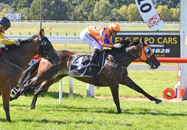 Avantage (Fastnet Rock) wins the Gr.1 Weight-For-Age Classic at Otaki