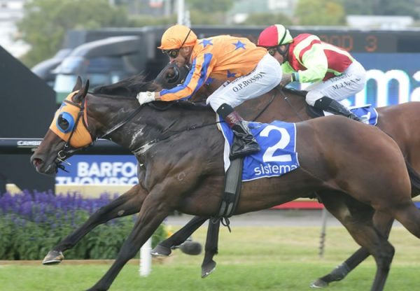 Avantage (Fastnet Rock) winning the Gr.1 System Railway Stakes at Ellerslie