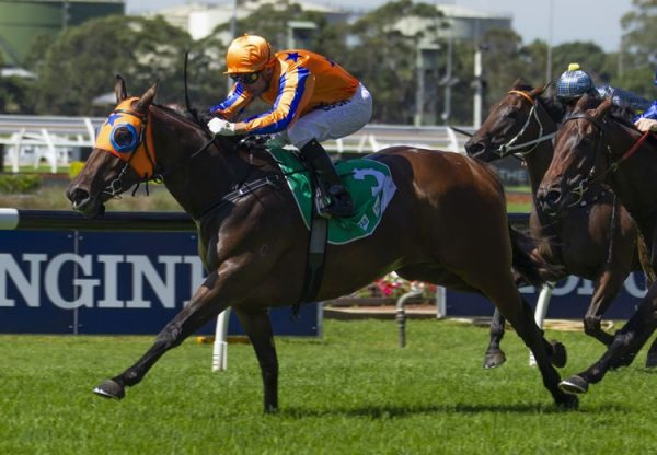 Avantage (Fastnet Rock) winning the Gr.2 ATC Birthday Card Quality at Rosehill