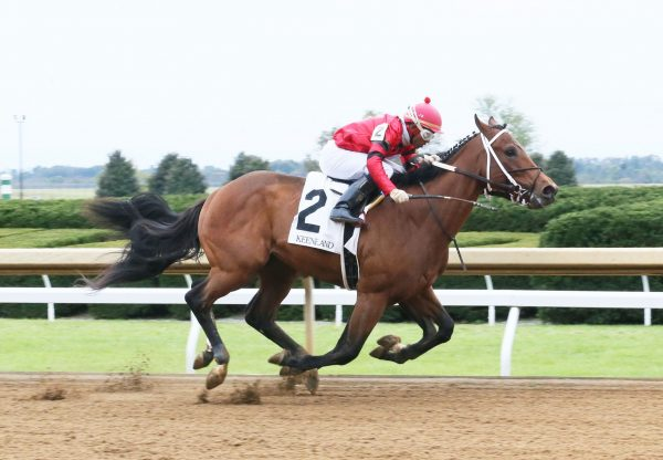 Boldor (Munnings) winning at Keeneland
