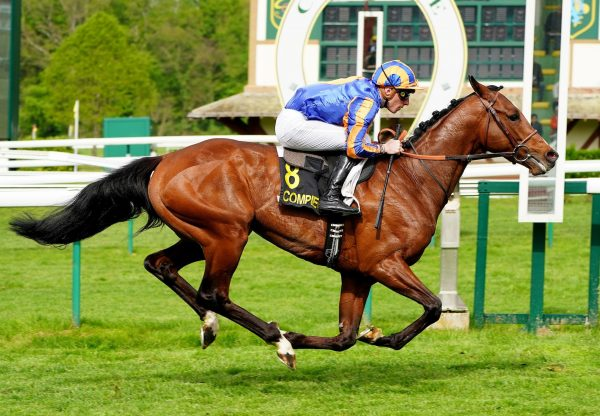 Ballet Russe Becomes The Latest Winner By Camelot