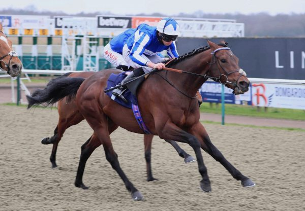 Bangkok (Australia) Wins His Second Listed Winter Derby Trial at Lingfield