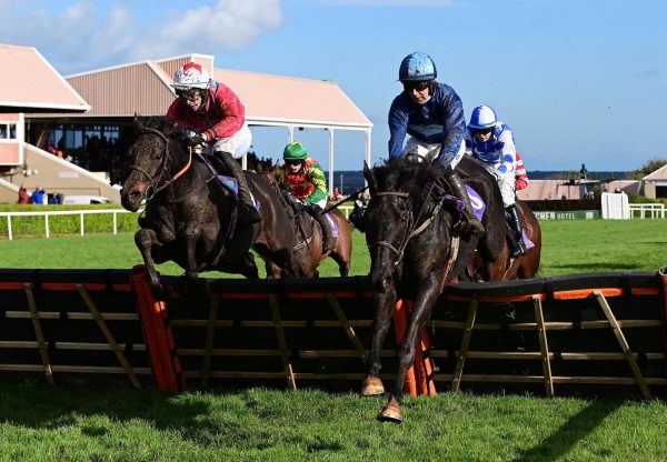 Barnacullia (Ocovango) Wins The Rated Novice Hurdle At Wexford