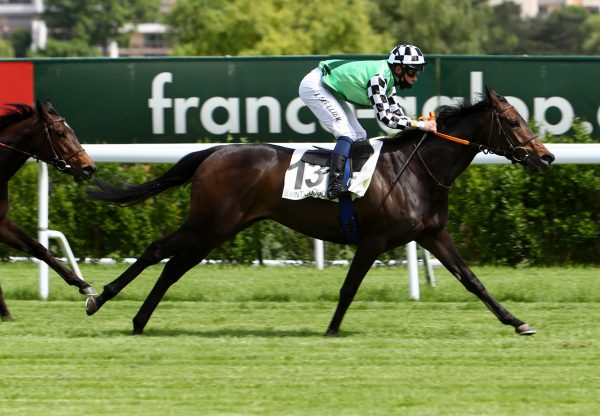 Ziyad (Rock Of Gibraltar) winning the Listed Prix Michel Houyvet at Deauville