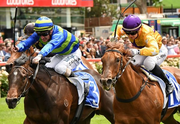 The Mission (Choisir) winning the G3 ATC The Schweppervescence at Rosehill