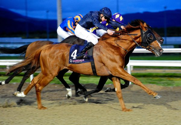 Blenheim Palace (Galileo) Wins The Gr.3 Diamond Stakes at Dundalk
