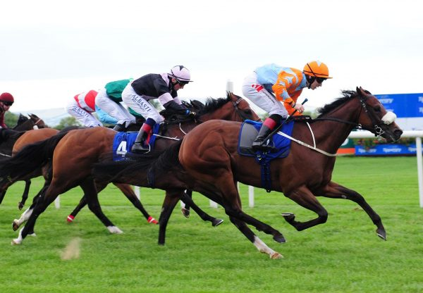Blue Uluru (Choisir) winning the Listed Abergwaun Stakes at Tipperary