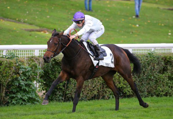 Bolleville (Camelot) Wins The Prix Solitude at Saint-Cloud