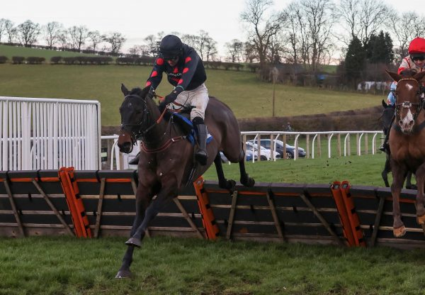 Bollingerandkrug (Getaway) Wins The Novice Hurdle At Kelso