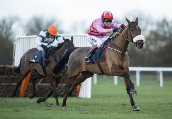 Brewin Upastorm Milan Impresses On His Hurdle Debut At Huntingdon