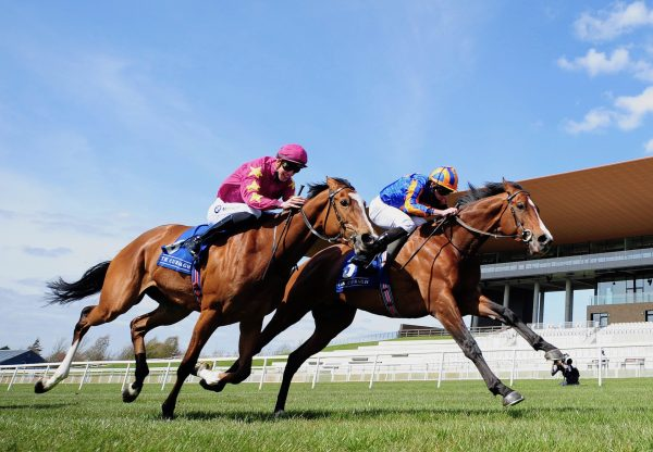 Broome (Australia) Wins The Group 3 Alleged Stakes at the Curragh
