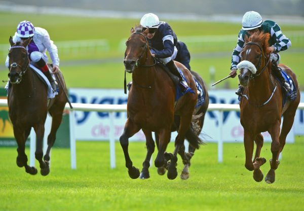 Buckhurst Wins The Royal Whip Stakes At The Curragh