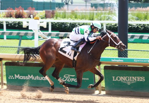 No Mo Spending (Uncle Mo) Wins The Joseph A Gimma Stakes at Belmont Park