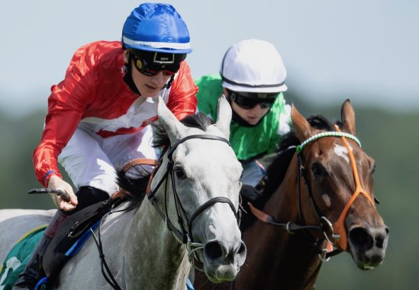 Cabaletta (Mastercraftsman) Wins The Listed Aphrodite Stakes at Newbury