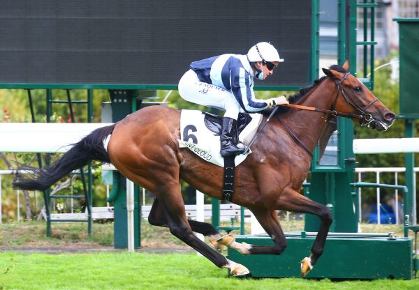 Calculating Wins At Saint Cloud 1