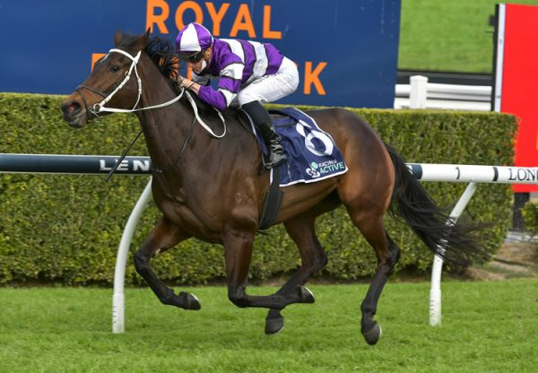 Canadian Spice (Vancouver) winning at Randwick