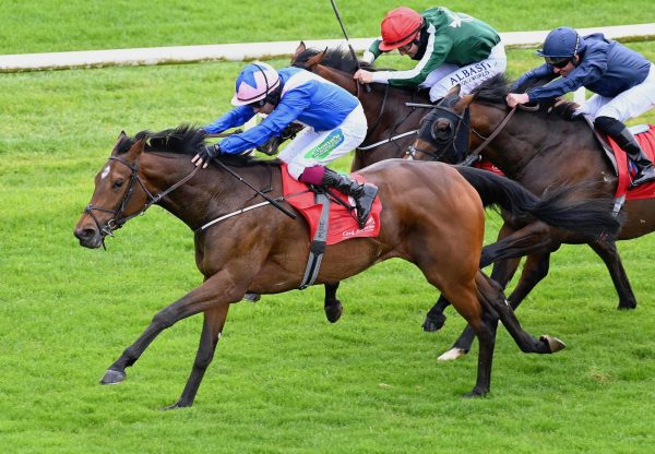 Can'thelpfallin (Starspangledbanner) Wins The Fermoy Maiden At Cork