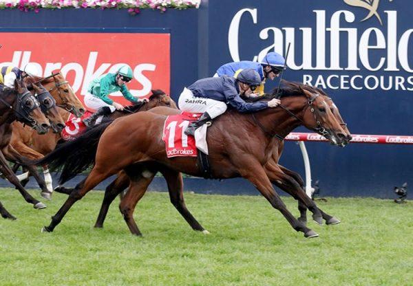Cape Of Good Hope (Galileo) winning the Gr.1 Caulfield Stakes at Caulfield